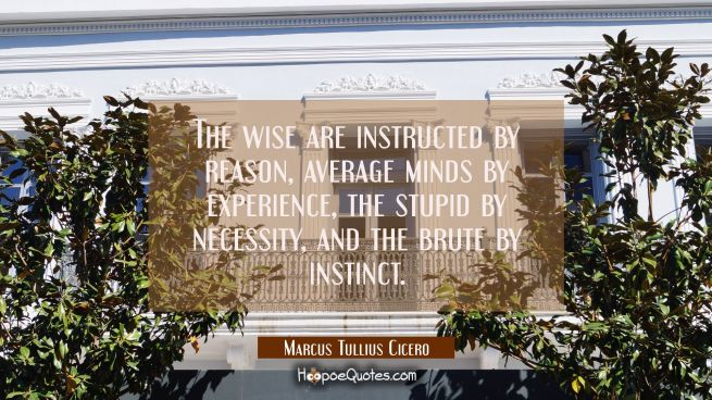 The wise are instructed by reason average minds by experience the stupid by necessity and the brute