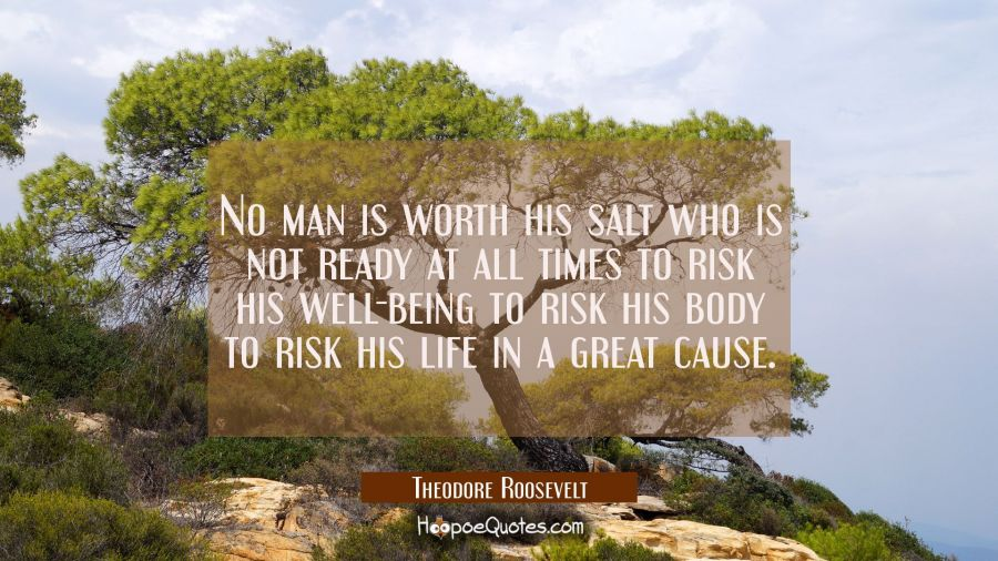 No man is worth his salt who is not ready at all times to risk his well-being to risk his body to r Theodore Roosevelt Quotes