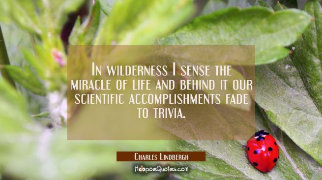 In wilderness I sense the miracle of life and behind it our scientific accomplishments fade to triv