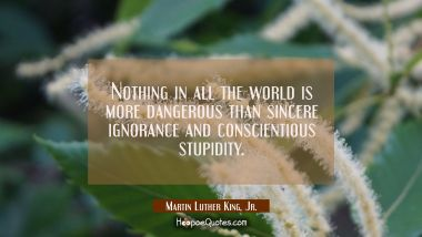 Nothing in all the world is more dangerous than sincere ignorance and conscientious stupidity.