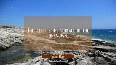 The flesh is the surface of the unknown.