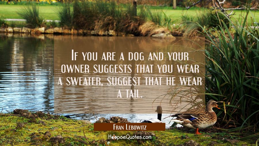 If you are a dog and your owner suggests that you wear a sweater suggest that he wear a tail. Fran Lebowitz Quotes