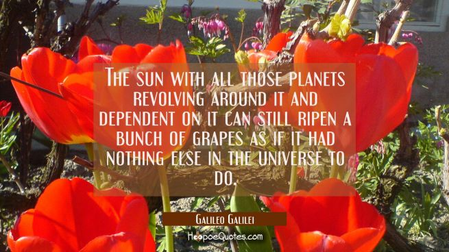 The sun with all those planets revolving around it and dependent on it can still ripen a bunch of g