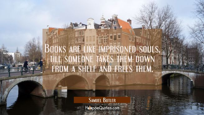 Books are like imprisoned souls till someone takes them down from a shelf and frees them.