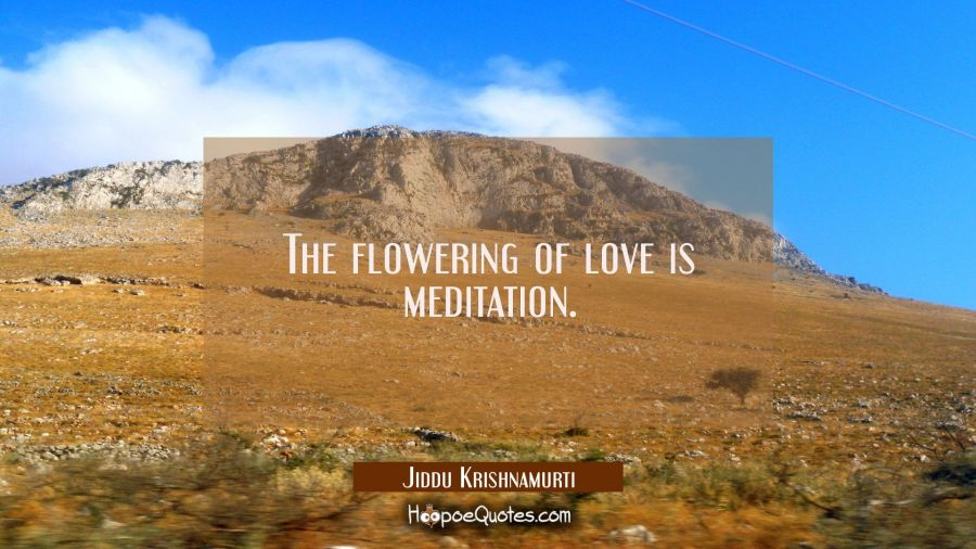 The flowering of love is meditation. Jiddu Krishnamurti Quotes