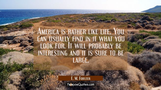 America is rather like life. You can usually find in it what you look for. It will probably be inte