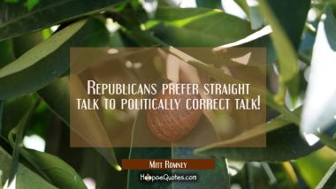 Republicans prefer straight talk to politically correct talk!