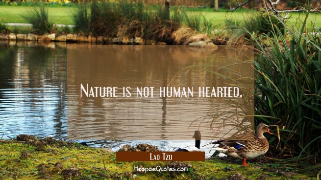 Nature is not human hearted.