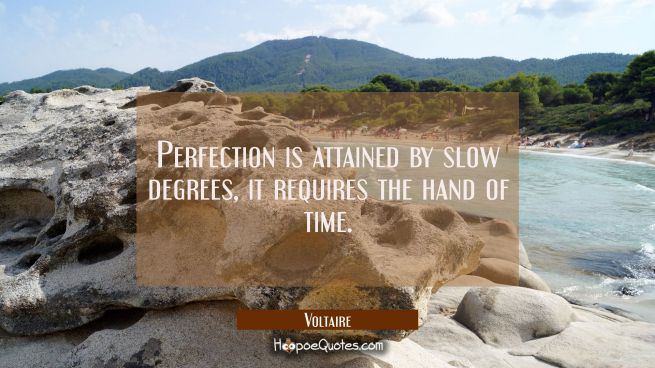 Perfection is attained by slow degrees, it requires the hand of time.