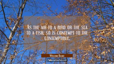 As the air to a bird or the sea to a fish so is contempt to the contemptible. William Blake Quotes