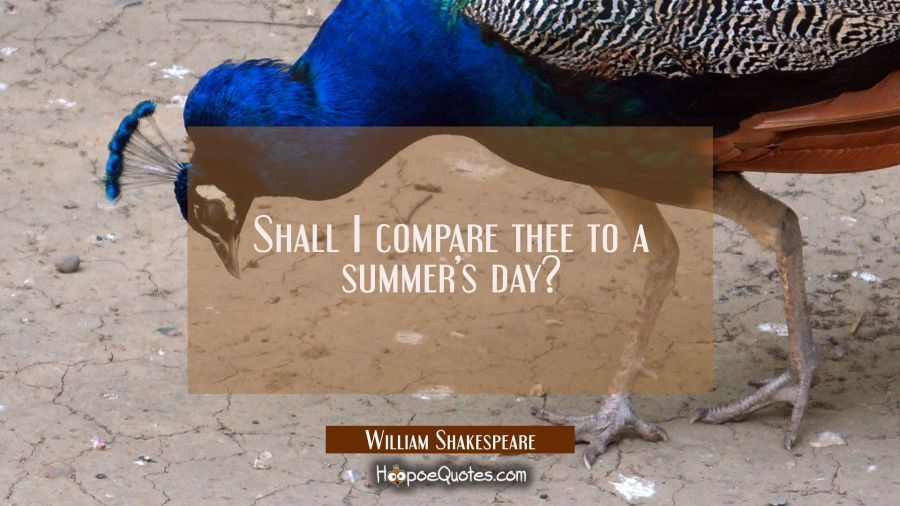 Shall I compare thee to a summer's day? William Shakespeare Quotes