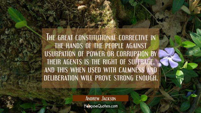 The great constitutional corrective in the hands of the people against usurpation of power or corru