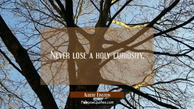 Never lose a holy curiosity.