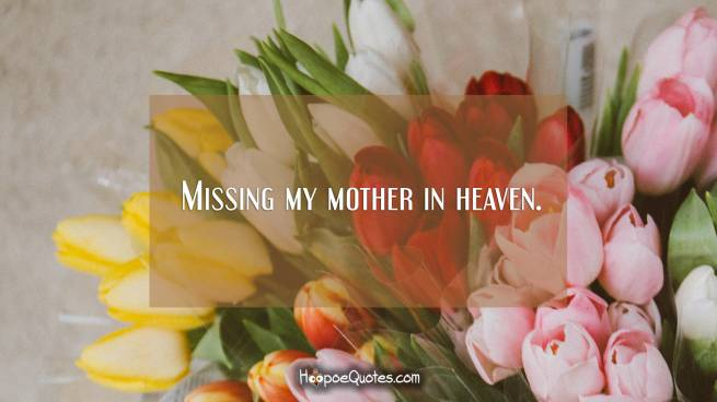 Missing my mother in heaven.