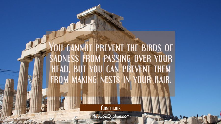 You cannot prevent the birds of sadness from passing over your head but you can prevent them from m Confucius Quotes