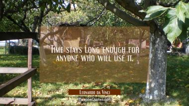 Time stays long enough for anyone who will use it. Leonardo da Vinci Quotes