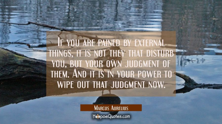 If you are pained by external things it is not they that disturb you but your own judgment of them. Marcus Aurelius Quotes