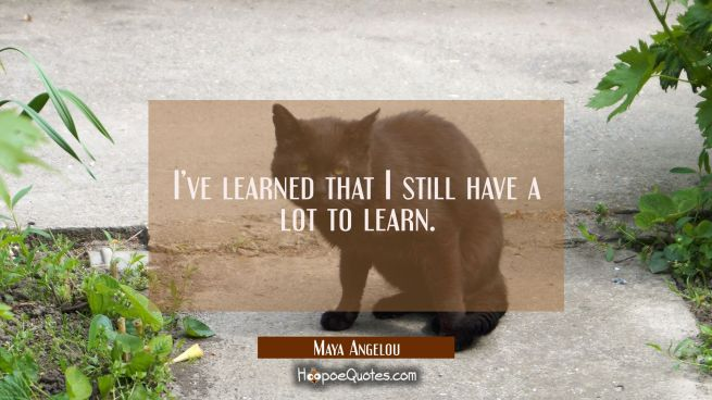 I've learned that I still have a lot to learn.