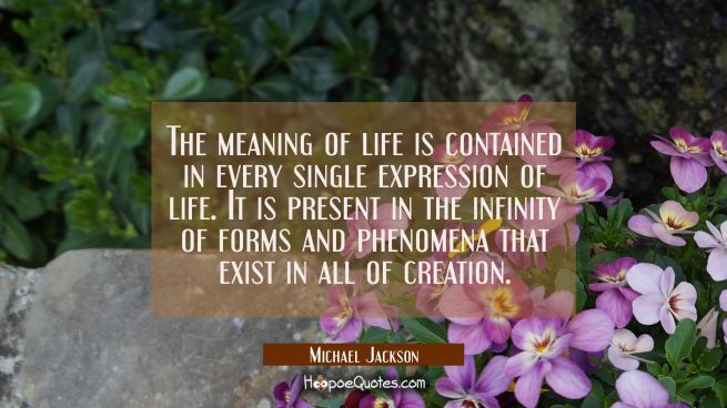 The meaning of life is contained in every single expression of life. It is present in the infinity