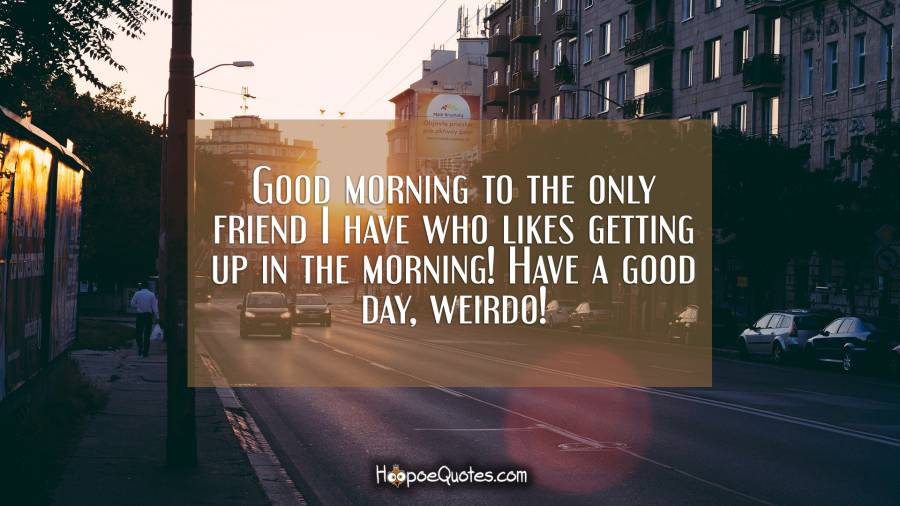 Good morning to the only friend I have who likes getting up in the morning! Have a good day, weirdo! Good Morning Quotes