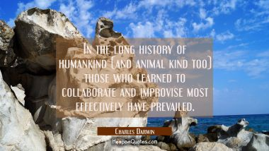 In the long history of humankind (and animal kind too) those who learned to collaborate and improvi