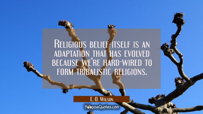 Religious belief itself is an adaptation that has evolved because we're hard-wired to form tribalis