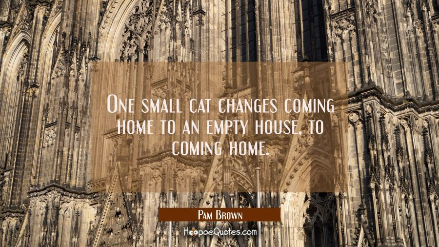 One small cat changes coming home to an empty house to coming home. Pam Brown Quotes
