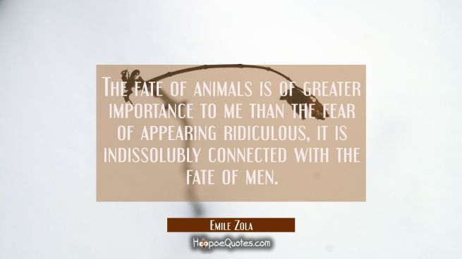 The fate of animals is of greater importance to me than the fear of appearing ridiculous, it is ind