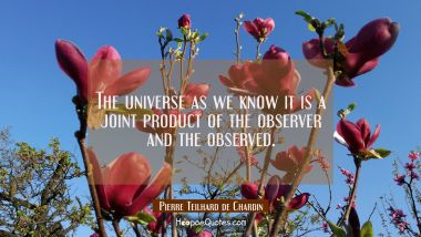 The universe as we know it is a joint product of the observer and the observed.