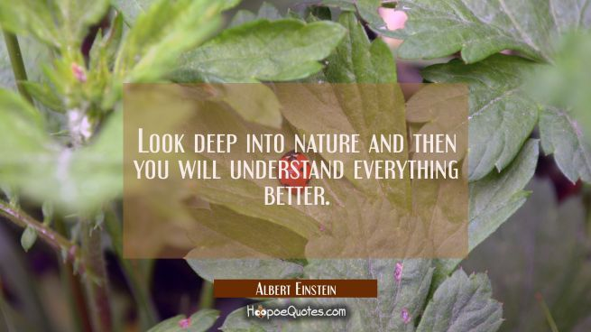 Look deep into nature and then you will understand everything better.