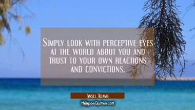 Simply look with perceptive eyes at the world about you and trust to your own reactions and convict Ansel Adams Quotes