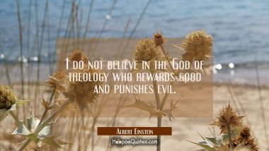 I do not believe in the God of theology who rewards good and punishes evil.