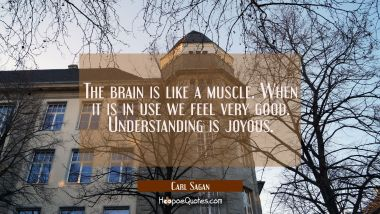 The brain is like a muscle. When it is in use we feel very good. Understanding is joyous.