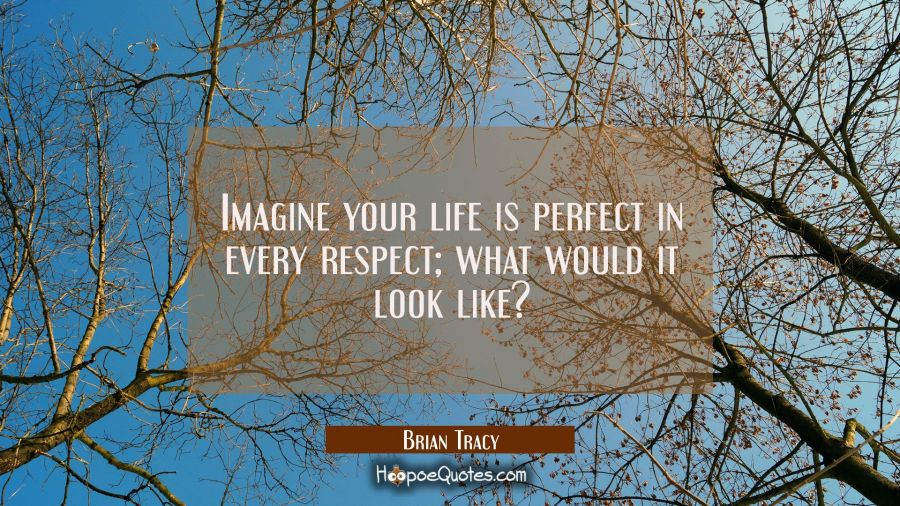 Imagine your life is perfect in every respect; what would it look like? Brian Tracy Quotes