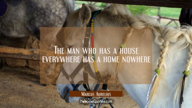 The man who has a house everywhere has a home nowhere