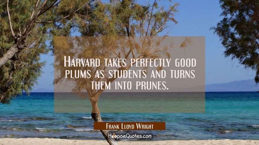 Harvard takes perfectly good plums as students and turns them into prunes. Frank Lloyd Wright Quotes