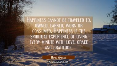 Happiness cannot be traveled to owned earned worn or consumed. Happiness is the spiritual experienc