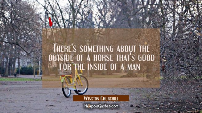 There's something about the outside of a horse that's good for the inside of a man