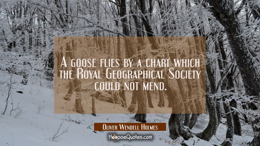 A goose flies by a chart which the Royal Geographical Society could not mend. Oliver Wendell Holmes Quotes