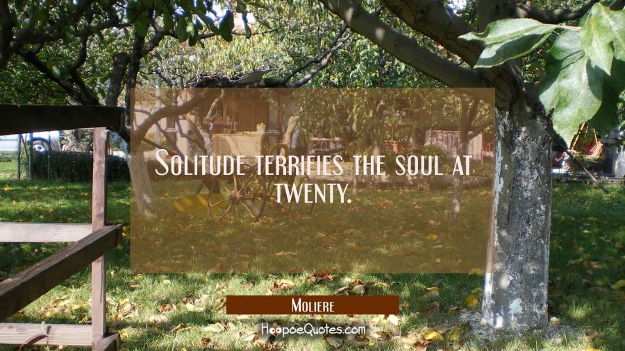 Solitude terrifies the soul at twenty. Moliere Quotes