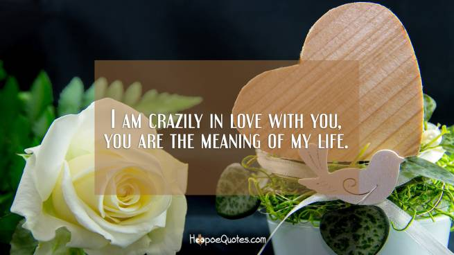 I am crazily in love with you, you are the meaning of my life.