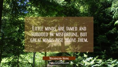 Little minds are tamed and subdued by misfortune, but great minds rise above them. Washington Irving Quotes