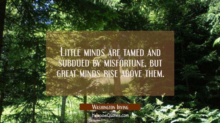 Little minds are tamed and subdued by misfortune, but great minds rise above them.
