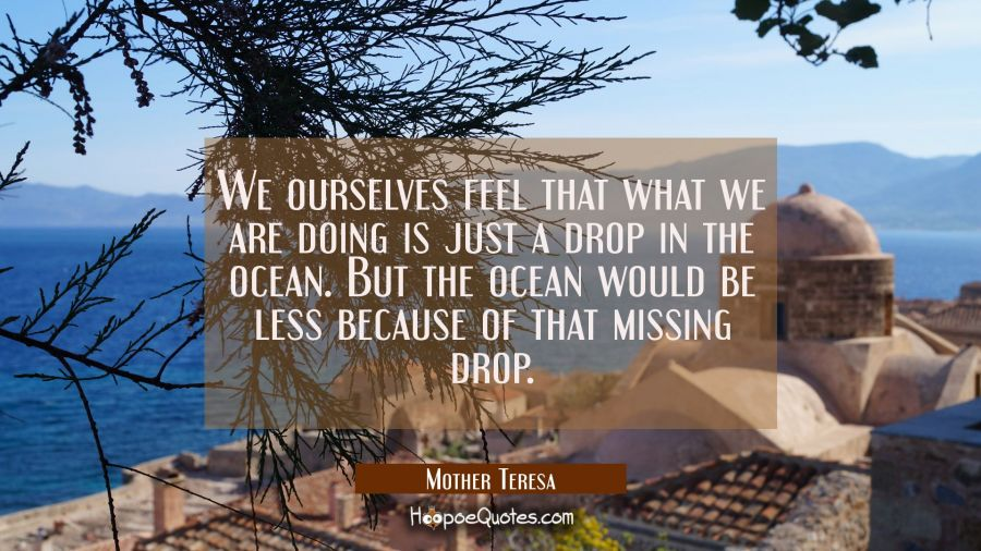We ourselves feel that what we are doing is just a drop in the ocean. But the ocean would be less b Mother Teresa Quotes