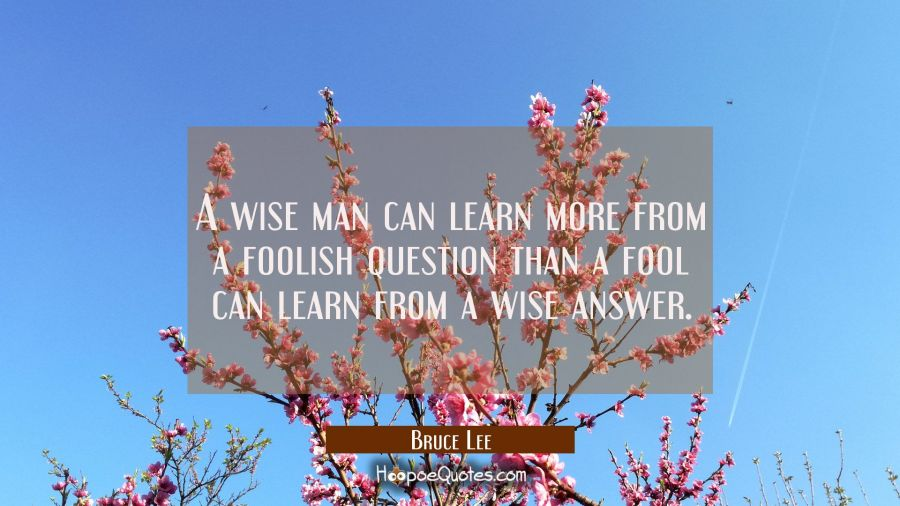 A wise man can learn more from a foolish question than a fool can learn from a wise answer. Bruce Lee Quotes