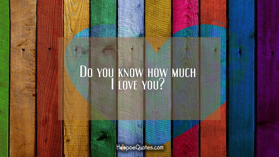 Do you know how much I love you? I Love You Quotes