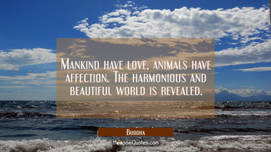 Mankind have love animals have affection. The harmonious and beautiful world is revealed. Buddha Quotes