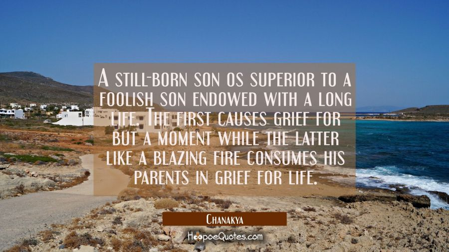 A still-born son os superior to a foolish son endowed with a long life. The first causes grief for Chanakya Quotes
