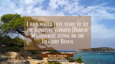 I have waited fifty years to see the Boneless Wonder [Ramsay MacDonald] sitting on the Treasury Ben