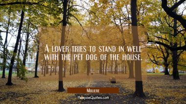 A lover tries to stand in well with the pet dog of the house. Moliere Quotes